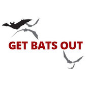Get Bats Out Warwick's photo