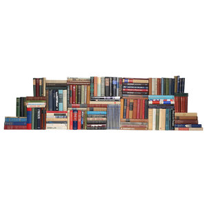Decorative Books Modern Onyx Blended Accents Book Wall Set Of 50 Traditional Books By Booth Williams Houzz