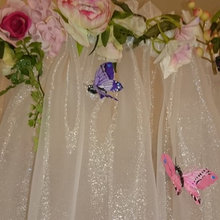 Little girls bed canopy