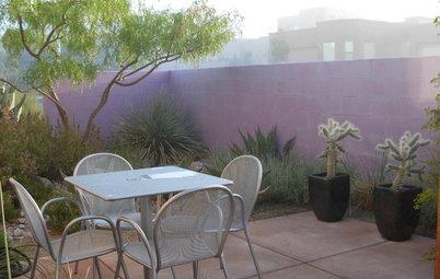Southwest Gardener's September Checklist