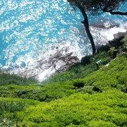 Foto di Alessio Balzarotti giardiniere