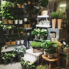 kaprifol blomsterhandel stockholm