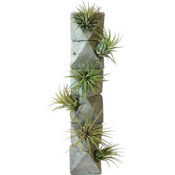 Contemporary Indoor Pots And Planters by Anson Design CO