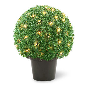 """22"""" Mini Boxwood Ball Shaped Potted Topiary Tree With 70 Clear Lights"""