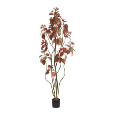 5' Rogot Purple Tree With Pot, Red