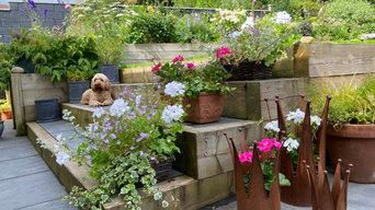 Suburban Edinburgh Garden