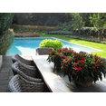 Sunflower Gardens's profile photo
