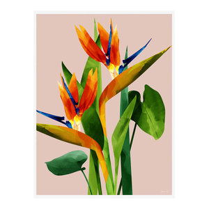 """Birds of Paradise"" Tropical Art Print, Print Only, 50x70 cm"