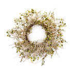 Birch Branch Wreath With Mini Leaves