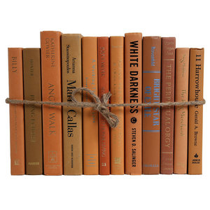 The Modern Caramel ColorPak, Brown Decorative Books