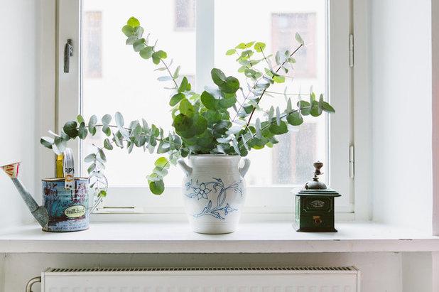 Scandinavian  by Nadja Endler   Photography
