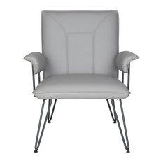 Safavieh Johannes Arm Chair, Gray