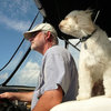 Houzz Call: Show Us Your Summer-Loving Dog!