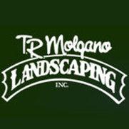 T.R. Molgano Landscaping's photo