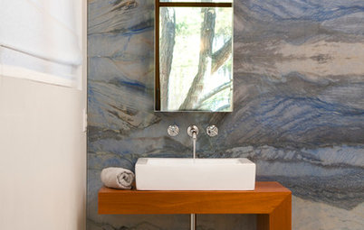 Room of the Day: Wings, Wind and Water Inspire a Bathroom