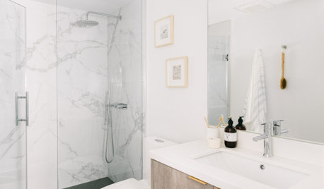 Bathroom of the Week: Big Style in Less Than 43 Square Feet