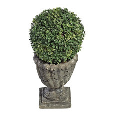 "10"" Boxwood Ball Topiary"