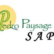 Pedro Paysage SAP's photo