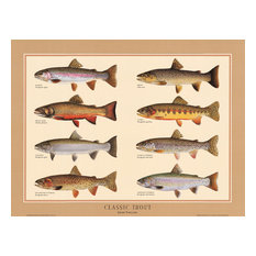 Fish Poster Classic Trout Poster by Joseph Tomelleri