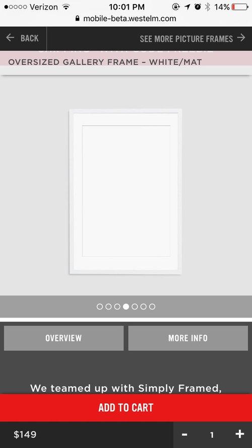20x30 Gallery Frames