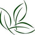 Borab Landscape Inc.'s profile photo
