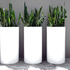 - Contemporary Lightweight Tall Cylinder - Outdoor Pots and Planters