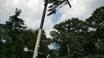 Crane Service / Tree removal