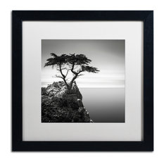 'The Lone Cypress' Matted Framed Canvas Art by Dave MacVicar