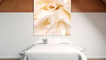 'SERENITY' WHITE ROSE CANVAS WALL ART PRINTS