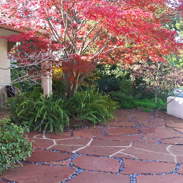 Mediterranean Courtyard- Lawn Removal Project
