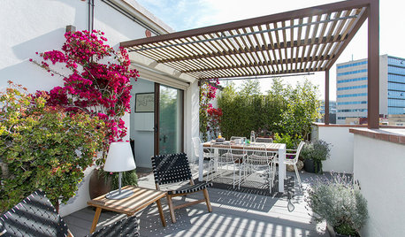 My Houzz: A Beautiful Terrace is the Heart of This Small Flat