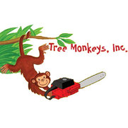 Foto de Tree Monkeys, Inc.