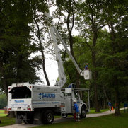 Sauers Tree & Landscape Service, Inc.'s photo