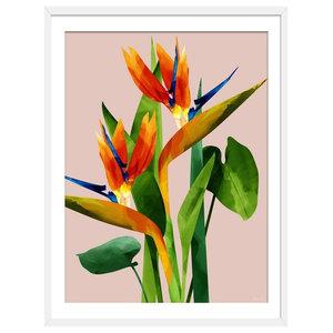 """""""Birds of Paradise"""" Tropical Art Print, White Framed, 50x70 cm"""