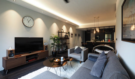 Houzz Tour: Dark Hues Anchor This Modern Industrial Apartment