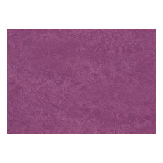 "Forbo Marmoleum Click Cinch Loc, Summer Pudding, Set of 7, 12""x36"" Panels"