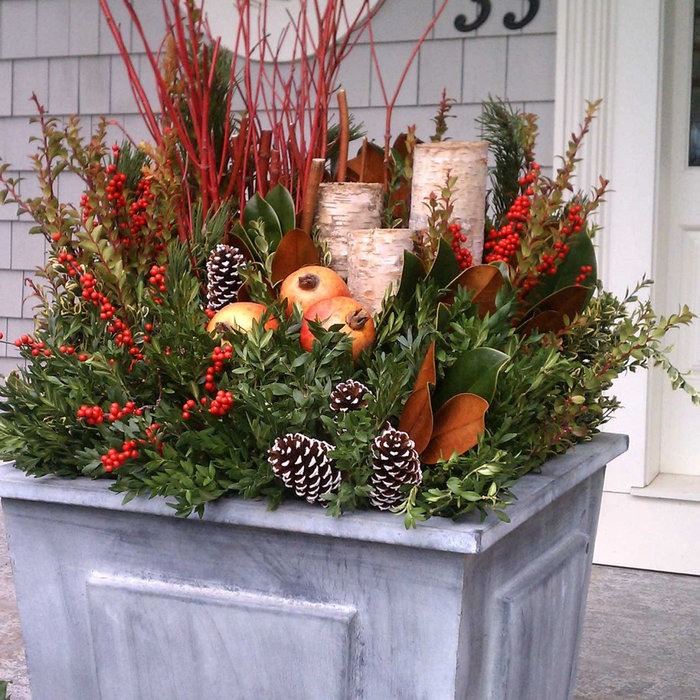 Winter Planter with Greens, Dogwood, Birch, Fruit and Cones