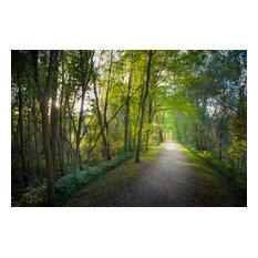 """Lago Maggiore Lane, Canvas Giclee, 12""""x8"""""""