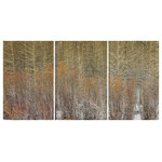 """James Bourret - Aspenwillow Triptych Print, Set of 3, 30""""x60"""" - Hi resolution Photographic triptych print on canvas by acclaimed photographer/artist James Bourret. This highly detailed photograph was made using a large format view camera and is full of depth and three-dimensionality. The prints are mounted (stretched) on 3 separate frames. Ready to hang. While no artwork should be hung in direct sunlight, the prints are very lightfast and durable."""