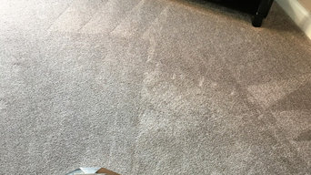Certified Carpet Cleaning
