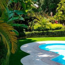 Plantas naturales + Césped Artificial en Jardín con piscina