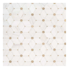 Cecily Pattern Polished Marble Pattern Marble