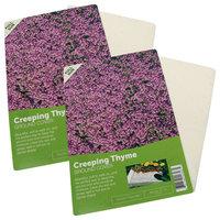 Creeping Thyme Flower Mat, 2-Pack