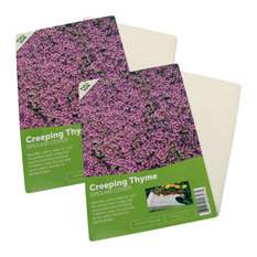 Creeping Thyme Flower Mat, 2-Pack