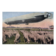 """""""Germany, View of A Zeppelin Blimp Over Grazing Sheep"""" Print, 12""""x18"""""""