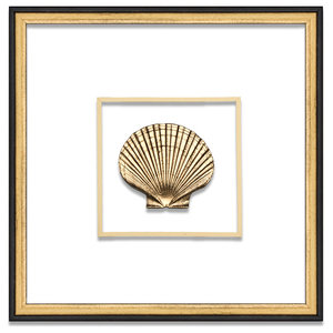 Scallop Suspended Between Glass With A Decorative French Line, Gold