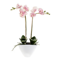 Emerald - Potted Artificial Phalaenopsis Plant, Light Pink - Artificial Plants and Trees