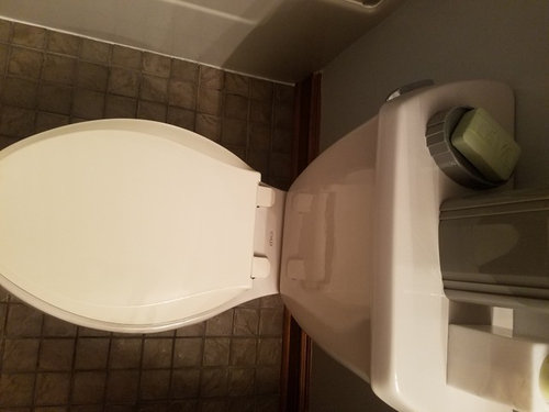 Superb Trying To Match A Kohler Toilet Lid To Toilet Already Two Creativecarmelina Interior Chair Design Creativecarmelinacom