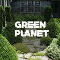 Фото профиля: GREEN PLANET