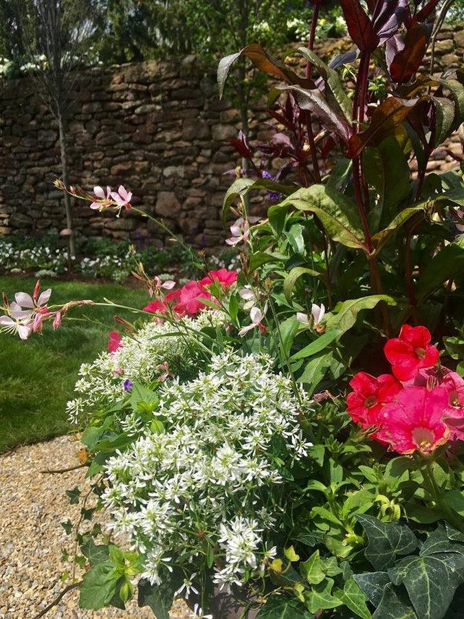 """""""Secret Garden""""- Celebrating Spring!"""